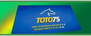 Toto-75-veikkaus